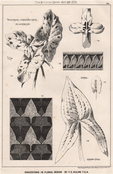 Associate Product Suggestions in Floral; Design by F.E. Hulme F.S.A.. Decorative (11) 1875 print