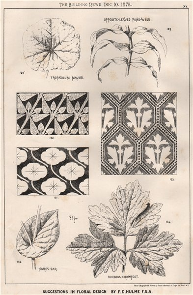 Associate Product Suggestions in Floral; Design by F.E. Hulme F.S.A.. Decorative (13) 1875 print