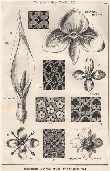 Associate Product Suggestions in Floral; Design by F.E. Hulme F.S.A.. Decorative (17) 1876 print
