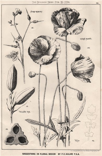 Associate Product Suggestions in Floral; Design by F.E. Hulme F.S.A.. Decorative (18) 1876 print