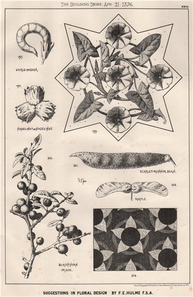Suggestions in Floral; Design by F.E. Hulme F.S.A.. Decorative (21) 1876 print