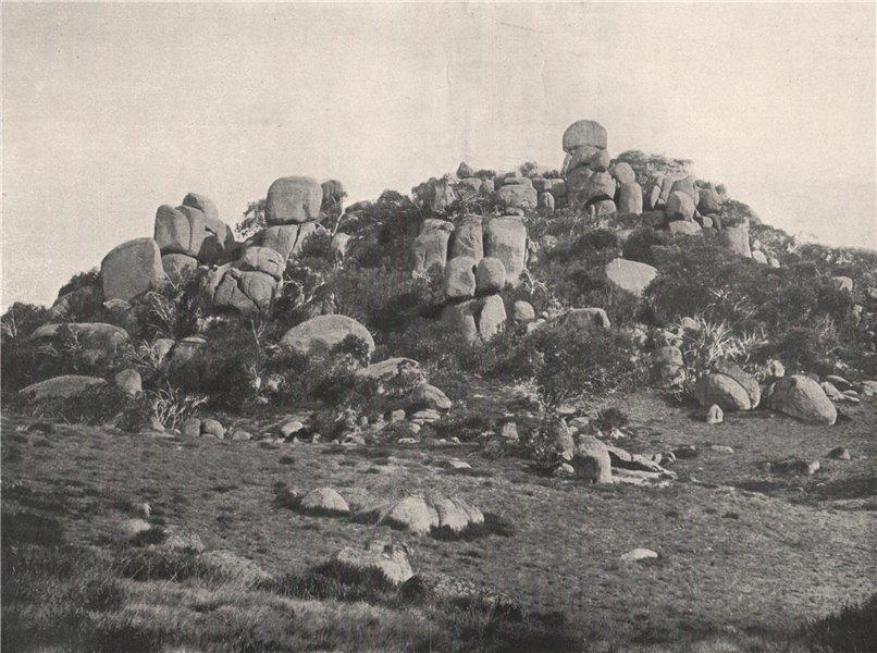 Associate Product Buffalo Mountains. Big Gun Hill looking East. Victoria, Australia. 1908 print