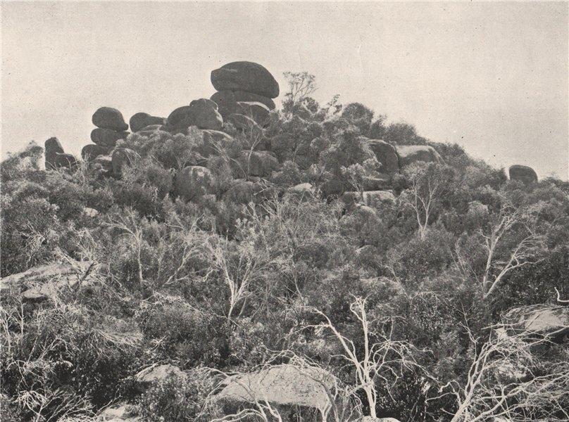 Associate Product Buffalo Mountains. Big Gun Hill looking North. Victoria, Australia. 1908 print