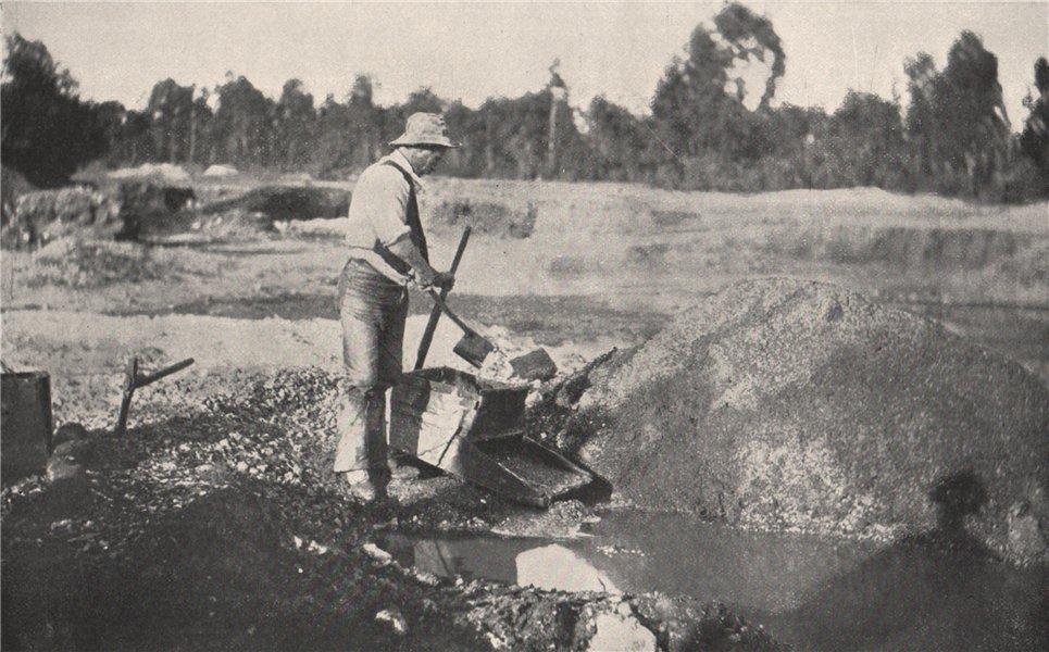 Associate Product Alluvial Mining -  Cradling. Victoria, Australia. 1909 old antique print