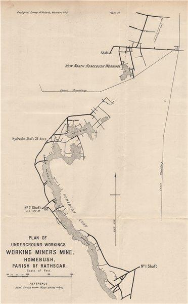 Associate Product Working Miners Mine, Homebush, Rathscar. Victoria, Australia. Mining 1909 map