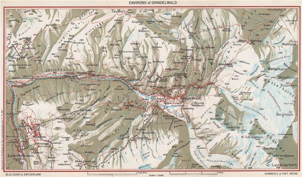 Associate Product GRINDELWALD ENVIRONS. Wengen Faulhorn Lauterbrunnen. Vintage map plan 1963