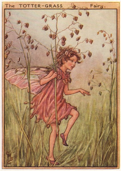 Associate Product Totter-Grass Fairy by Cicely Mary Barker. Wayside Flower Fairies c1948 print