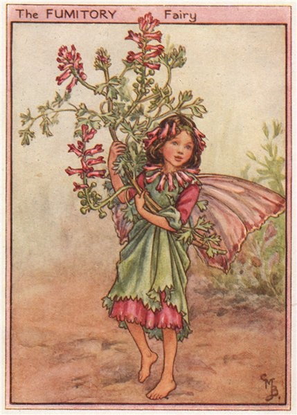 Associate Product Fumitory Fairy by Cicely Mary Barker. Wayside Flower Fairies c1948 old print
