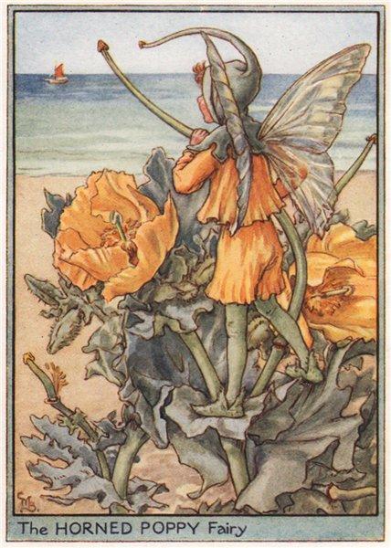 Associate Product Horned Poppy Fairy by Cicely Mary Barker. Wayside Flower Fairies c1948 print