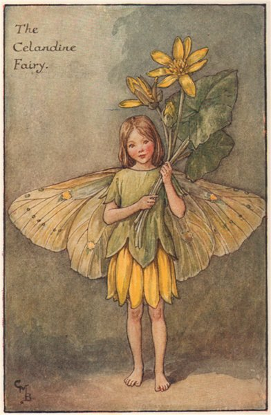 Associate Product Celandine Fairy by Cicely Mary Barker. Spring Flower Fairies c1935 old print