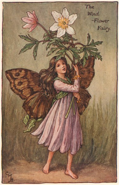 Associate Product Wind-Flower Fairy by Cicely Mary Barker. Spring Flower Fairies c1935 old print