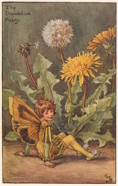 Associate Product Dandelion Fairy by Cicely Mary Barker. Spring Flower Fairies c1935 old print