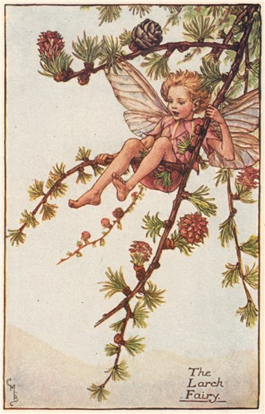 Associate Product Larch Fairy by Cicely Mary Barker. Spring Flower Fairies c1935 old print