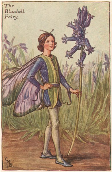 Associate Product Bluebell Fairy by Cicely Mary Barker. Spring Flower Fairies c1935 old print