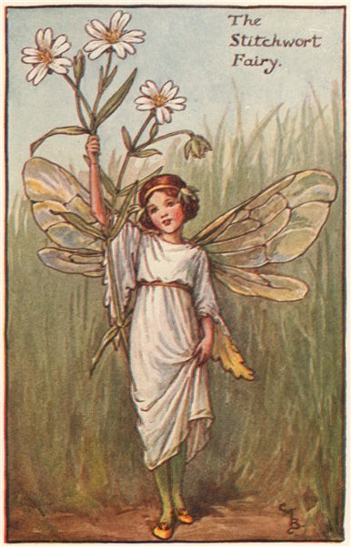 Stitchwort Fairy by Cicely Mary Barker. Spring Flower Fairies c1935 old print