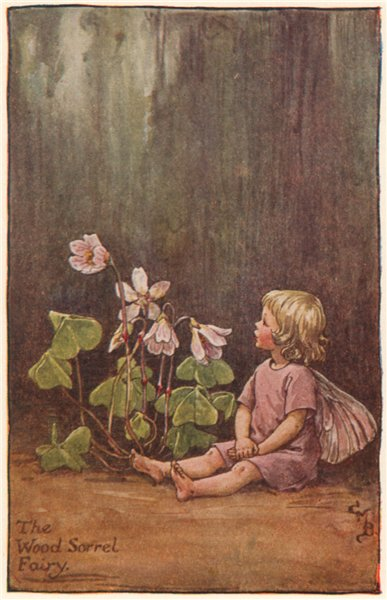 Wood Sorrel Fairy by Cicely Mary Barker. Spring Flower Fairies c1935 old print