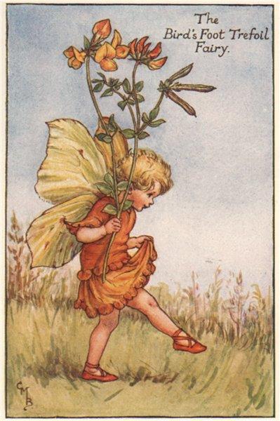Associate Product Bird's Foot Trefoil Fairy by Cicely Mary Barker. Summer Flower Fairies c1935