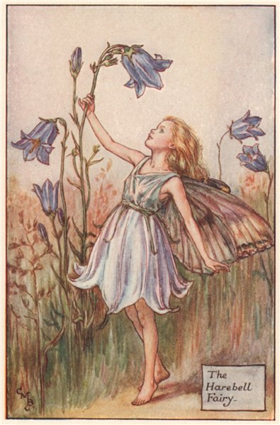 Associate Product Harebell Fairy by Cicely Mary Barker. Summer Flower Fairies c1935 old print