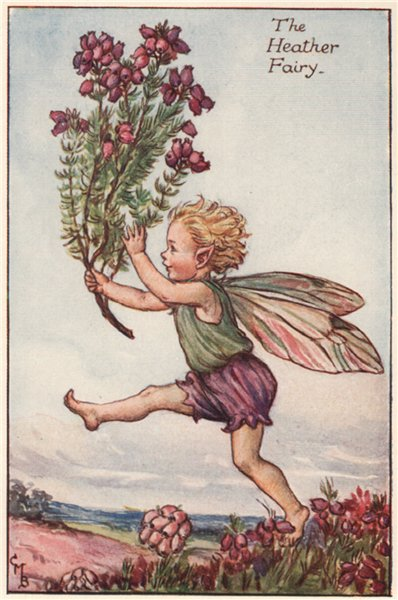 Associate Product Heather Fairy by Cicely Mary Barker. Summer Flower Fairies c1935 old print