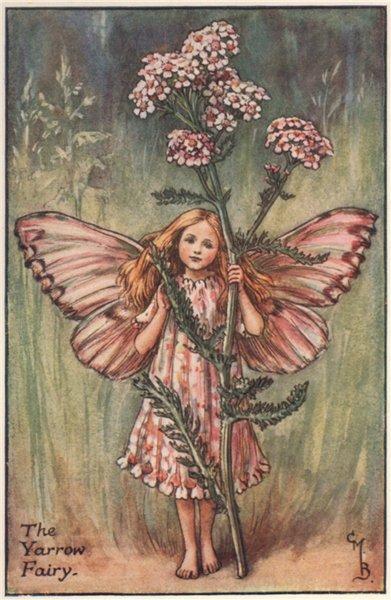 Associate Product Yarrow Fairy by Cicely Mary Barker. Summer Flower Fairies c1935 old print