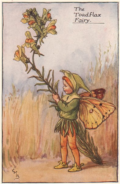 Associate Product Toadflax Fairy by Cicely Mary Barker. Summer Flower Fairies c1935 old print