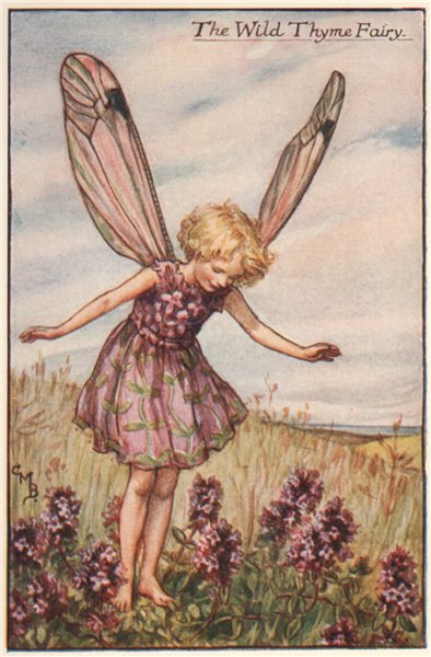 Associate Product Wild Thyme Fairy by Cicely Mary Barker. Summer Flower Fairies c1935 old print