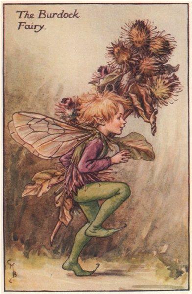 Associate Product Burdock Fairy by Cicely Mary Barker. Autumn Flower Fairies c1935 old print