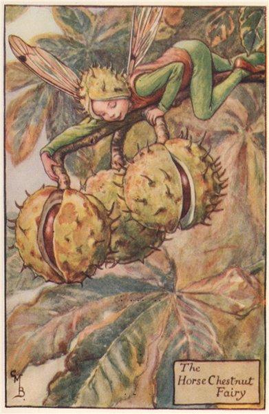 Associate Product Horse Chestnut Fairy by Cicely Mary Barker. Autumn Flower Fairies c1935 print