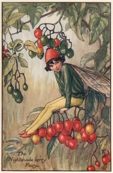 Associate Product Nightshade berry Fairy by Cicely Mary Barker. Autumn Flower Fairies c1935