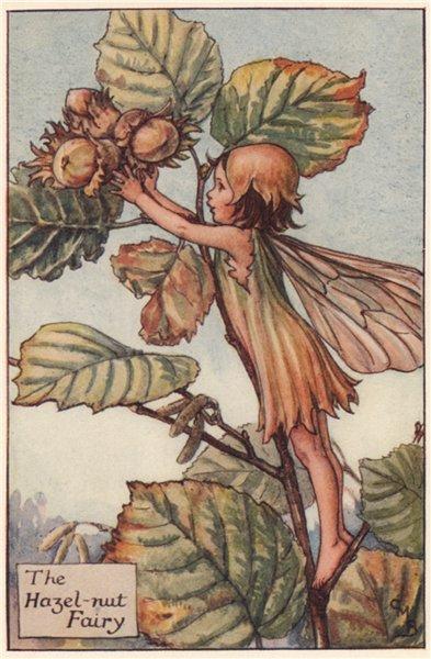 Associate Product Hazel-nut Fairy by Cicely Mary Barker. Autumn Flower Fairies c1935 old print