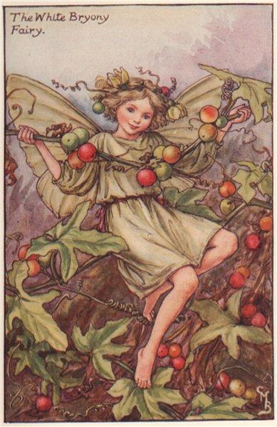 White Bryony Fairy by Cicely Mary Barker. Autumn Flower Fairies c1935 print