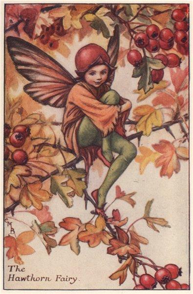 Associate Product Hawthorn Fairy by Cicely Mary Barker. Autumn Flower Fairies c1935 old print