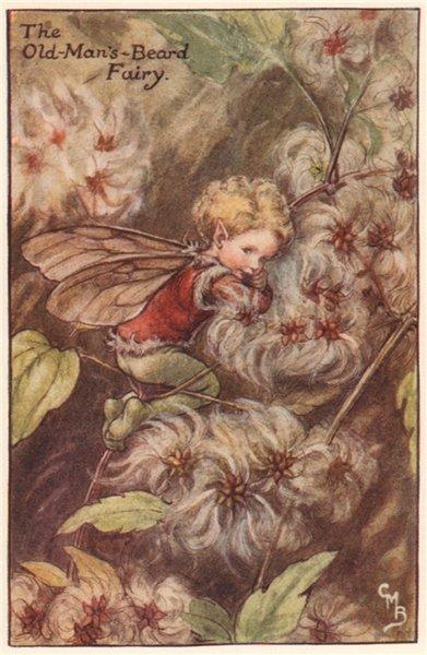 Associate Product Old-Man's-Beard Fairy by Cicely Mary Barker. Autumn Flower Fairies c1935 print