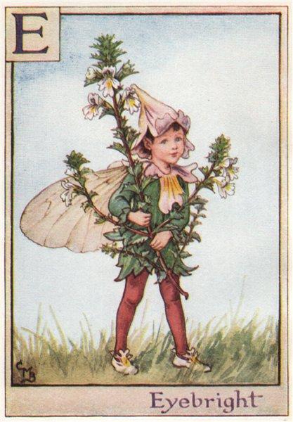 Associate Product E = Eyebright Fairy by Cicely Mary Barker. Alphabet Flower Fairies c1934 print