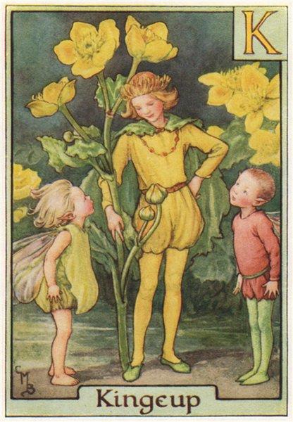Associate Product K = Kingcup Fairy by Cicely Mary Barker. Alphabet Flower Fairies c1934 print