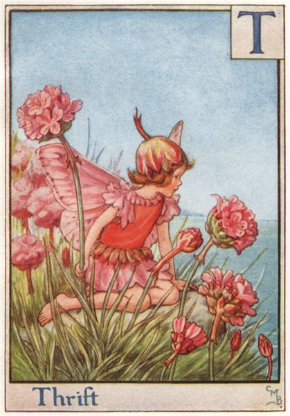 Associate Product T = Thrift Fairy by Cicely Mary Barker. Alphabet Flower Fairies c1934 print