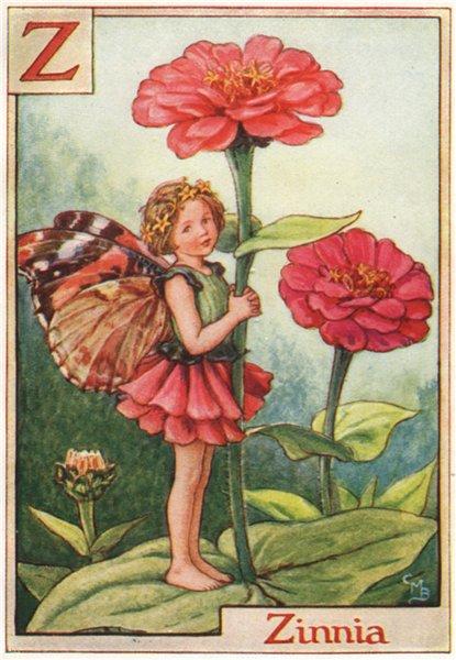 Associate Product Z = Zinnia Fairy by Cicely Mary Barker. Alphabet Flower Fairies c1934 print