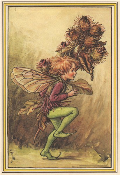 Associate Product Burdock Fairy by Cicely Mary Barker. Winter Flower Fairies 1985 old print