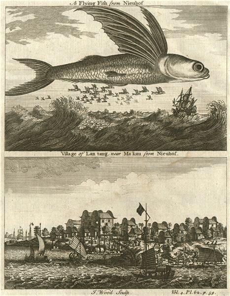 CHINA. Flying Fish. Lantang [LIANTANG] village near Ma kau [MACAU]. WOOD 1746
