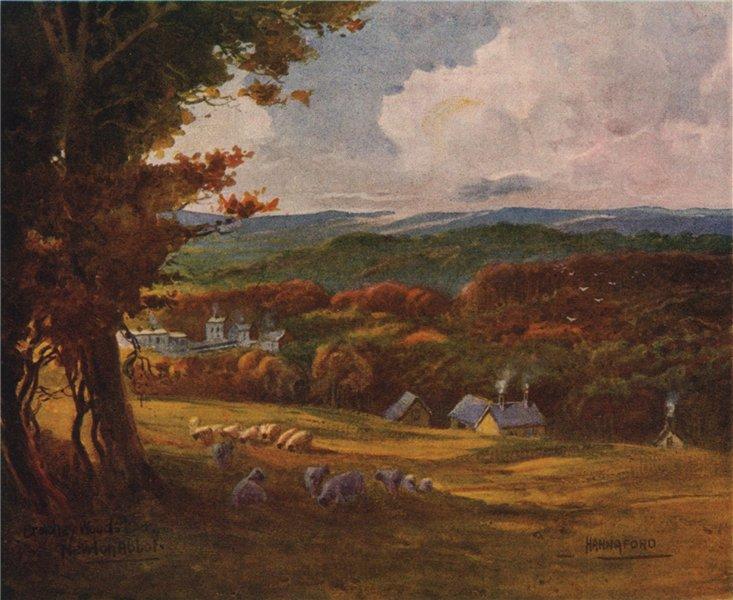 Associate Product Bradley Woods, Newton Abbot, South Devon, by Charles E. Hannaford 1907 print