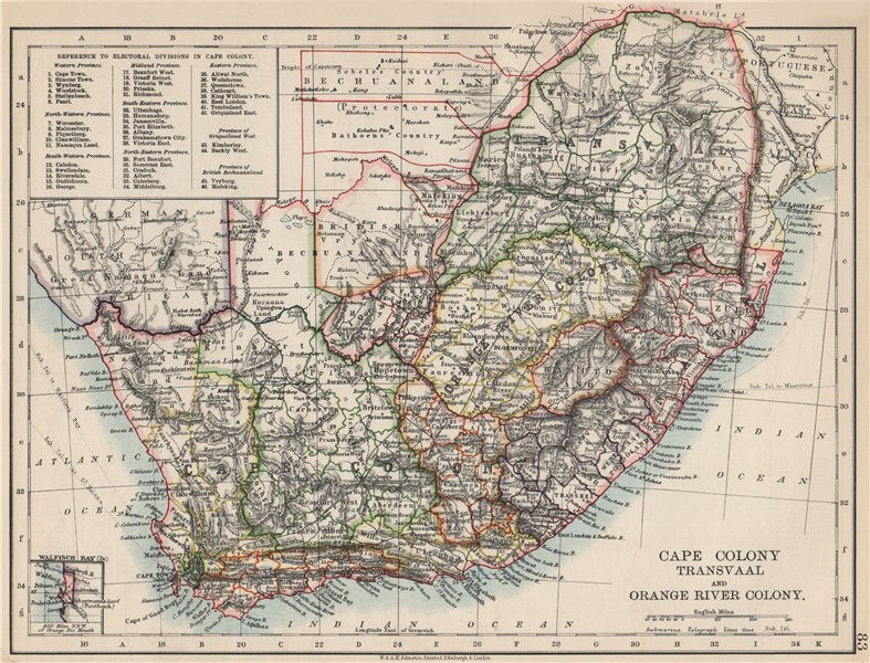 Associate Product COLONIAL SOUTH AFRICA. Cape Colony. Orange River Colony. Transvaal 1903 map