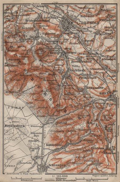 Associate Product DETMOLD & TEUTOBURGER WALD/Forest topo-map. Northrhine-Westfalia karte 1910