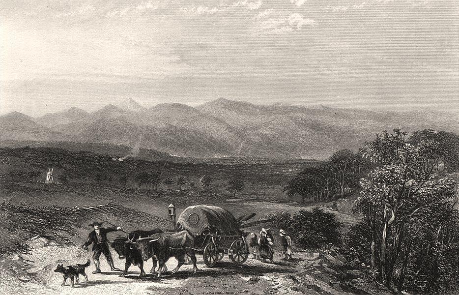 "Associate Product ""Barrossa Ranges"". Edwin Carton BOOTH/John Skinner PROUT. South Australia c1874"
