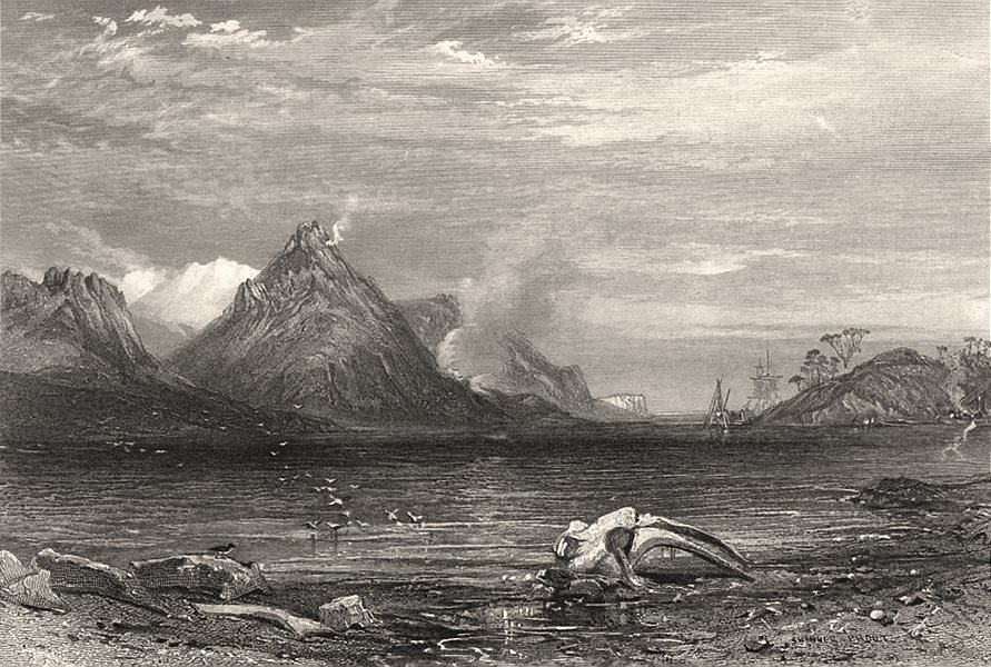 """Associate Product """"Old Whaling Station"""", by Edwin Carton BOOTH/John Skinner PROUT. Australia c1874"""