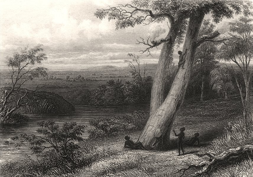 """Associate Product """"The Gwalior Plains"""", by Edwin Carton BOOTH after J. CARR. Australia c1874"""