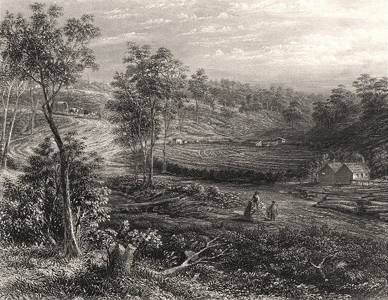 """Associate Product """"A Chinese Garden in Victoria"""", by Edwin Carton BOOTH. Australia c1874 print"""