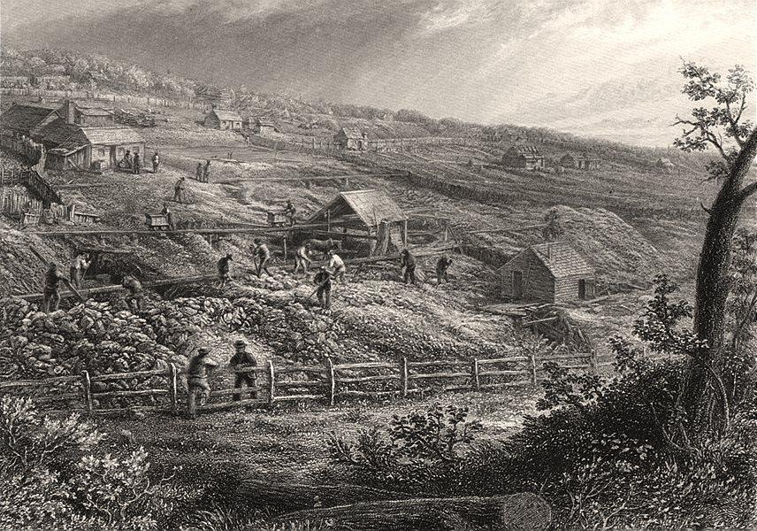 "Associate Product ""Concordia Gold Mines"" by Edwin Carton BOOTH. Victoria Australia Gold Rush c1874"