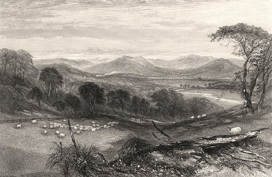 """Associate Product """"Harpers Hill, Hunter River"""", by E.C. BOOTH/J.S. PROUT. NSW, Australia c1874"""