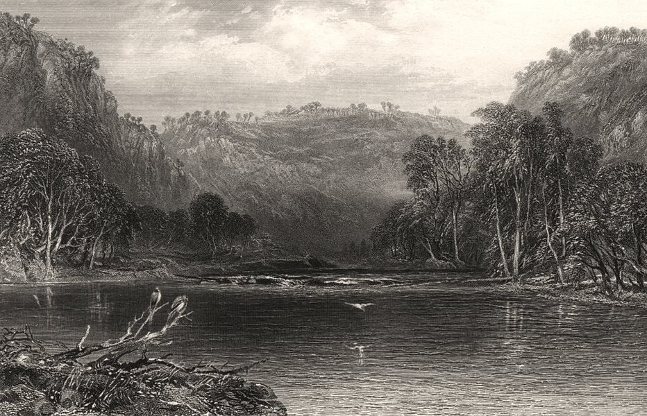 """Associate Product """"On The Cow Pasture River"""". BOOTH/PROUT. Nepean River, NSW, Australia c1874"""