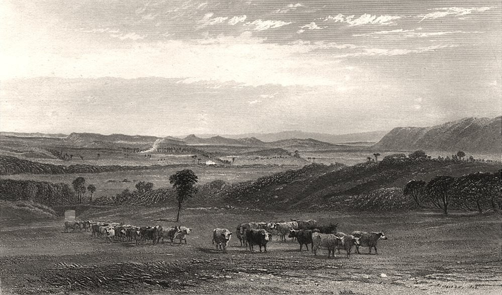 """Associate Product """"The Cow Pastures, New South Wales"""". BOOTH/PROUT. Nepean River, NSW c1874"""
